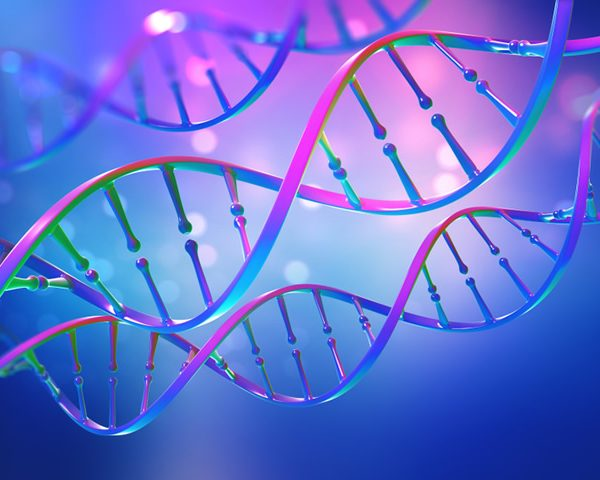 DNA and Fertility